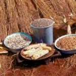 Sovranità alimentare COSPE