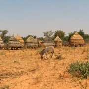 Niger_DA-KEITA-A-ILLELA-A-LOG_12.4.2005_020