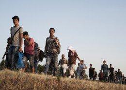 Kanjiza, Serbia, July 2015 - A group of migrants from Syria walking towards the border with Hungary.  ----- Since the Greek border has been a place almost inaccessible to migratory flows, the Balkan route for migrants has become the new access road to Europe. But since March 2015, the Hungarian Government has been clamoring for an anti-immigration policy. In July 14th, 2015 Hungary has started building an anti-migrant fence on Serbian border.    ><  Kanjiza, Serbia, luglio 2015 - Un gruppo di immigrati provenienti dalla Siria cammina verso il confine con l'Ungheria.   -----  Da quando la frontiera greca è un posto quasi inaccessibile per i flussi migratori, la rotta balcanica è diventata per i migranti la nuova via di accesso all?Europa. Ma da marzo 2015 il governo ungherese sta spingendo per una politica di anti immigrazione. Il 14 giugno 2015 l?Ungheria ha iniziato a costruire un muro al confine con la Serbia per fermare i migranti che cercano di entrare illegalmente in territorio ungherese.