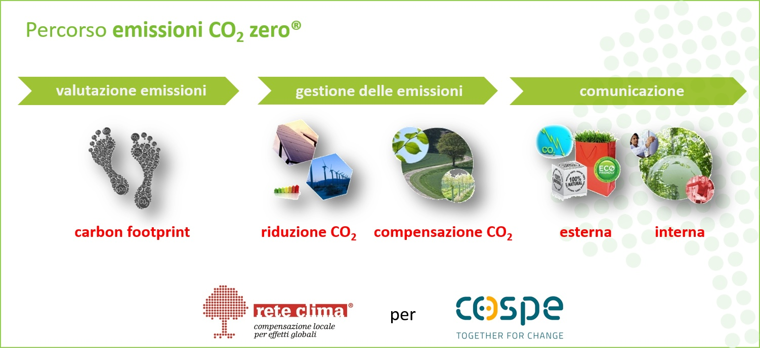 carbon-assessment_carbon-management