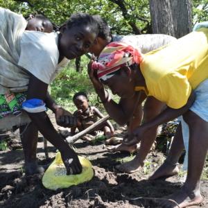 KUNIMA INJO – Agroecologia per la diversificazione dell'economia rurale